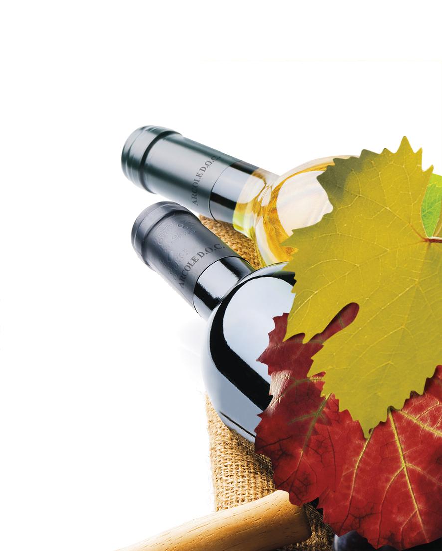 I Soci e i Produttori della Strada del Vino Arcole